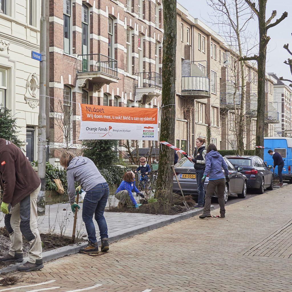 inplanten boomspiegel proefvak parkstraat