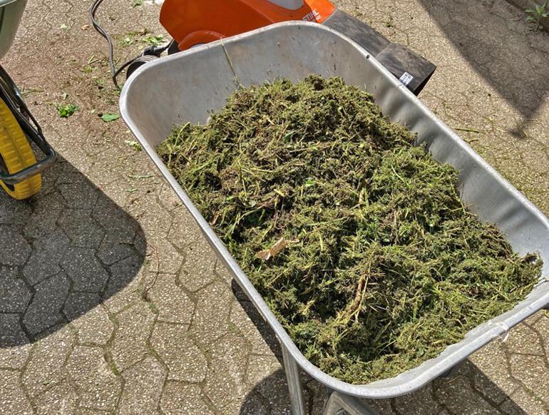 tot mulch voor in het plantvak